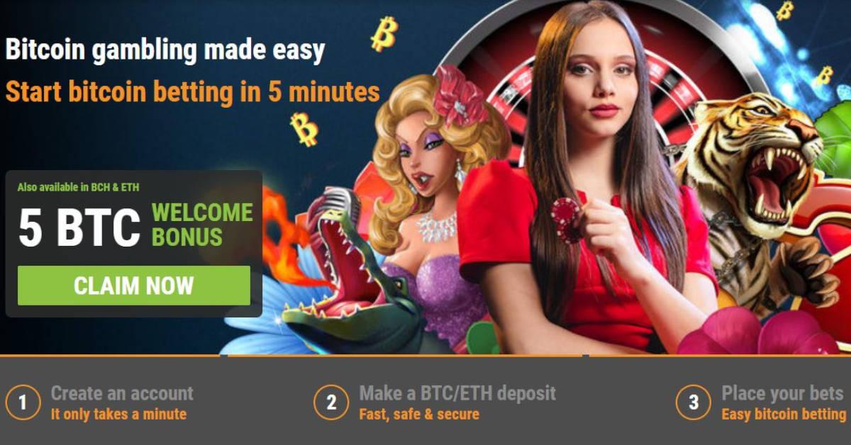 网上赌博网站菲律宾